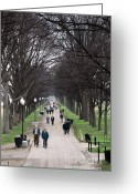 Jogging Greeting Cards - A Walk Along the National Mall Greeting Card by William Kuta