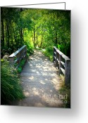 Golden Gate Park Greeting Cards - A Walk in the Park Greeting Card by Carol Groenen