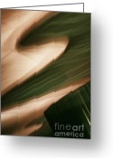 Brushstroke Greeting Cards - A Walk Through The Renaissance Greeting Card by Linda Knorr Shafer