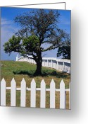 Wood Fences Greeting Cards - A White Picket Fence Surrounds A Field Greeting Card by Raymond Gehman