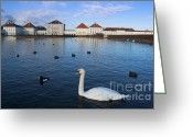 Nymphenburg Greeting Cards - A white swan at Nymphenburg Palace Greeting Card by Andrew  Michael