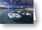 Ice Floes Greeting Cards - A Winter View Looking Greeting Card by Arild Heitmann