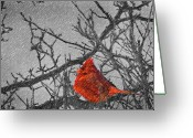 Cardinal Greeting Cards - A Winter Wonder Greeting Card by Kenneth Krolikowski