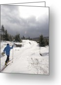 Precipitation Greeting Cards - A Woman Cross Country Skiing Greeting Card by Skip Brown