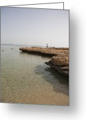 Sheikh Greeting Cards - A Woman Hops Along The Rocky Shoreline Greeting Card by Taylor S. Kennedy