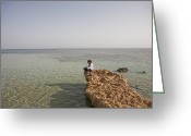 Sheikh Greeting Cards - A Woman Sits On The Sinai Peninsula Greeting Card by Taylor S. Kennedy
