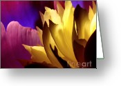 Contemporary Photography Greeting Cards - A Womans Scorn Greeting Card by Louie Rochon