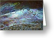 Shells Digital Art Greeting Cards - Abalone Stories Greeting Card by Gwyn Newcombe