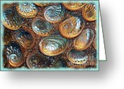 Abalone Seashell Greeting Cards - Abalones Greeting Card by Judi Bagwell