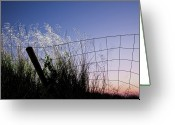 Fence Greeting Cards - Abandoned Fence At Sunset Greeting Card by Thomas David Photography