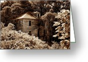 Duotone Greeting Cards - Abandoned in Time Greeting Card by Melissa Petrey