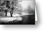 Acrylic Framed Greeting Cards - Abbots Lake in the Fog BW Greeting Card by Dan Carmichael