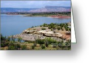 Chama River Greeting Cards - Abiquiu Lake New Mexico Greeting Card by Vicki Pelham