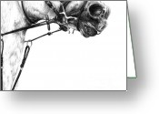 Graphite Drawings Greeting Cards - Above the Bit Greeting Card by Sheona Hamilton-Grant
