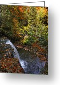 Autumn Photographs Greeting Cards - Above the Falls Greeting Card by Phill  Doherty