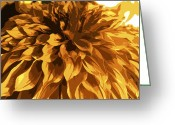 Violet Greeting Cards - Abstract Flowers 14 Greeting Card by Sumit Mehndiratta