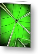 Fabric Greeting Cards - Abstract Of Green Greeting Card by Meirion Matthias
