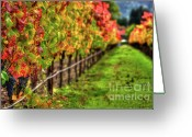 Cabernet Sauvignon Greeting Cards - Abundant Fall Rows Greeting Card by Mars Lasar