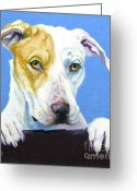 Donations Greeting Cards - AC Pup Greeting Card by Pat Burns