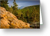 Trees And Rock Cliffs Greeting Cards - Acadian Mountains Greeting Card by Susan Cole Kelly