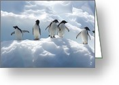 Antarctica Greeting Cards - Adelie Penguins Lined Up On An Iceberg Greeting Card by Tom Murphy