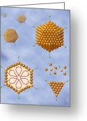 Knob Greeting Cards - Adenovirus Structure, Artwork Greeting Card by Art For Science