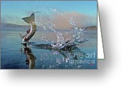 Poster Photo Greeting Cards - Adirondack Life Greeting Card by Brian Pelkey