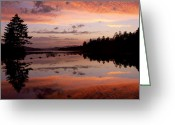 Reflected Tree Greeting Cards - Adirondack Reflections 2 Greeting Card by Joshua House