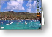 West Indies Greeting Cards - Admiralty Bay Greeting Card by Thomas R Fletcher