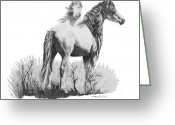 Wild Horse Drawings Greeting Cards - Adobe Wind Greeting Card by Marianne NANA Betts