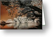 Lake Photographs Greeting Cards - Adventure Greeting Card by Mario Bennet