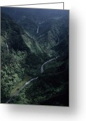 Lush Vegetation Greeting Cards - Aerial Of Olekole Canyon Greeting Card by Ira Block