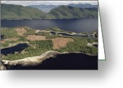 U.s. National Forest Greeting Cards - Aerial View Of Clearcut Temperate Greeting Card by Gerry Ellis