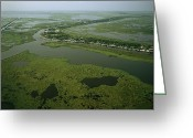 Southern States Greeting Cards - Aerial View Of Delacroix Island Greeting Card by Medford Taylor