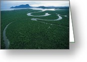River Scenes Greeting Cards - Aerial View Of The Salak River. Mount Greeting Card by Tim Laman
