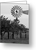Windmill And Tree Greeting Cards - Aermotor Windmill San Joaquin County CA Greeting Card by Troy Montemayor
