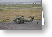 Army Air Corps Greeting Cards - Afghan Army Soldiers Guard An Mi-35 Greeting Card by Terry Moore
