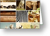 Hippopotamus Tapestries Textiles Greeting Cards - African Animals Safari Collage  Greeting Card by Anna Omelchenko