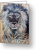 Lions Painting Greeting Cards - African Lion Greeting Card by Nick Gustafson