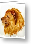 Lion Greeting Cards - African Male Lion Greeting Card by Michael Vigliotti