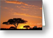 Silhouette Greeting Cards - African Sunset Greeting Card by Sebastian Musial