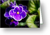 Garden Decoration Mixed Media Greeting Cards - African Violet Greeting Card by Ms Judi