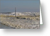 Surge Greeting Cards - After Storm Sandi Greeting Card by Deborah Benoit