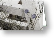 "\""blue Flowers\\\"" Greeting Cards - Against The Fence Greeting Card by Rebecca Cozart"
