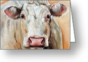 Charolais Greeting Cards - Agnas Greeting Card by Laura Carey