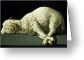 Oil Canvas Greeting Cards - Agnus Dei Greeting Card by Francisco de Zurbaran