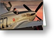 Tragedy Greeting Cards - Air Racing Legends Jimmy Leeward and  The Galloping Ghost Greeting Card by Gus McCrea