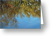 Fall River Scenes Greeting Cards - Airplane Reflections Greeting Card by LeeAnn McLaneGoetz McLaneGoetzStudioLLCcom