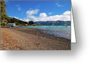 Oceania Greeting Cards - Akaroa Harbour boatshed Greeting Card by John Buxton