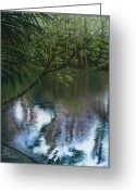 River Pastels Greeting Cards - Alafia River Reflection Greeting Card by Susan Jenkins